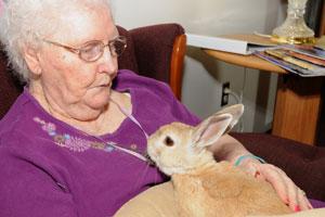 Women holding a rabbit